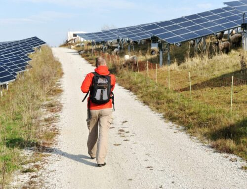 How to Prepare for Solar Panel Installation